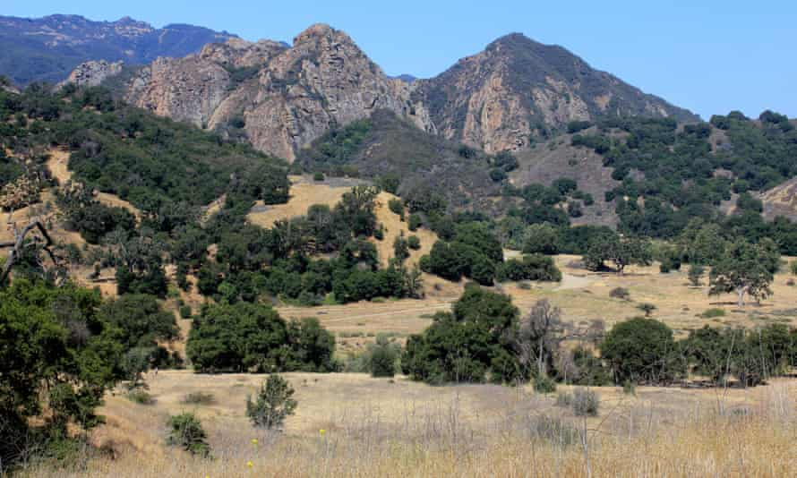 A view in Malibu Creek State Park. 'When the police came ... they told me, 'things like this don't happen here.'