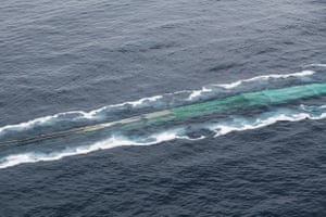 Krill fishing in the vicinity of Trinity Island.