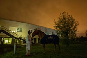 Peyo and trainer Hassen Bouchakour in the car park of Calais Hospital at the end of a working day