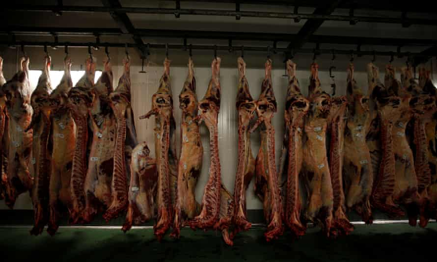 Beef carcasses in a cold store in Poland. In a survey for Eurogroup for Animals, 89% of respondents said stunning should be mandatory before slaughter.