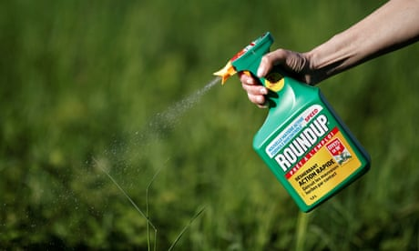 Monsanto ordered to pay $289m as jury rules weedkiller caused man's