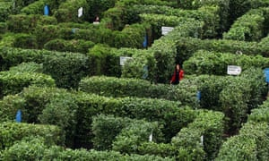 A Huge Maze Is Erected In Trafalgar Square
