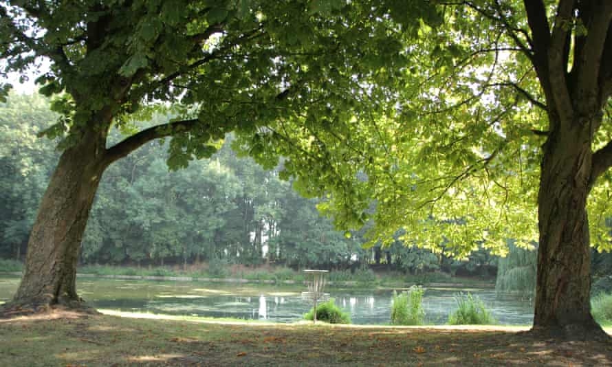 A view of a lake amid trees in the Sloterpark, Amsterdam