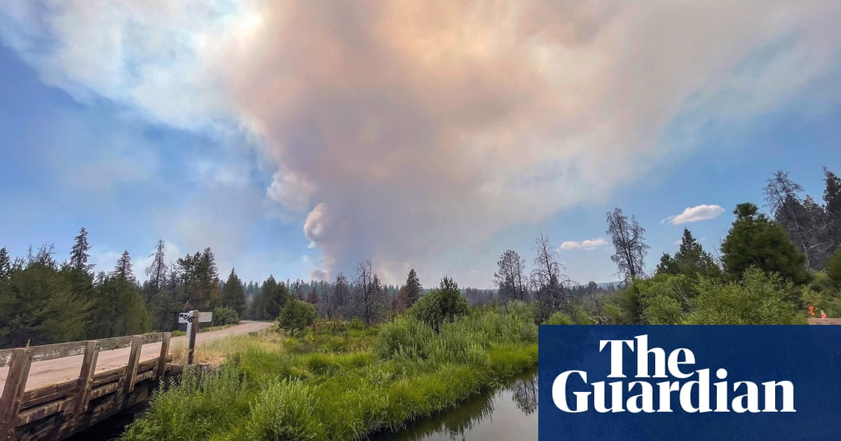'The fire moved around it': success story in Oregon fuels calls for prescribed burns