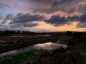 Dusk falls on Waltham Brooks, Coldwaltham, West Sussex