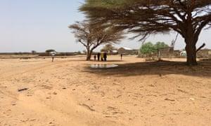 Drought affected communities in Saylabari, Somaliland
