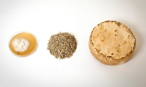 Can you build a house out of this? (from left) pure mycelium cultures at the Biohm lab; hemp shiv; and a mycelium puck for testing colour, strength and texture.