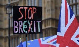 pro eu protesters demonstrating outside of the houses parliament