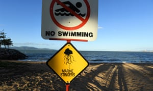 A marine stinger warning sign is seen at a beach in Townsville in far-north Queensland. Experts warn irukandji are drifting south.
