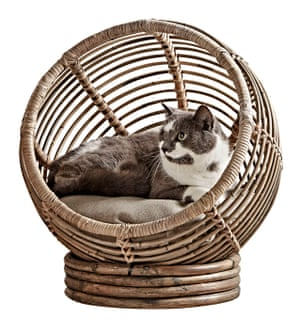 Rattan pet cocoon, £95, by Cox & Cox.