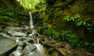 A waterfall in Fairy Glen between Parbold and Appley Bridge.