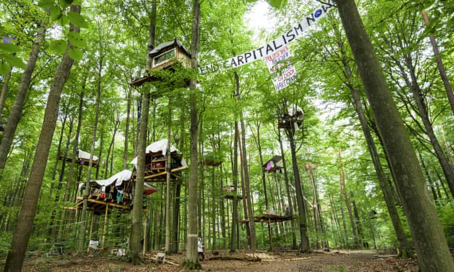 Tree houses have been built on the planned A49 route in Dannenröder, Germany.