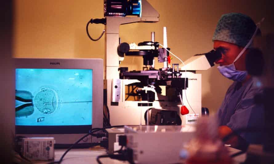 In vitro fertilisation of an egg.