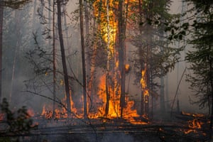 A forest burns outside the village of Byas-Kyuel. Fuelled by a June heatwave, wildfires have swept through more than 1.5m hectares (3.7m acres) of Yakutia's swampy coniferous taiga