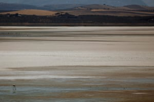 Flamingo at an almost dried up lagoon at the Fuente de Piedra natural reserve near Malaga, Spain