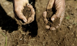 Drought-hit land in Nicaragua