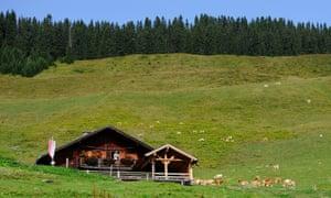 Alm hut Holzalm Wildschönau