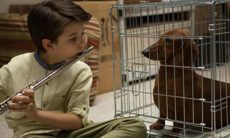 A boy and his dachshund
