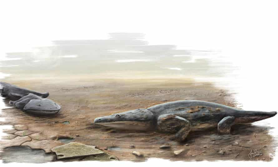 An artist's impression of the giant carnivorous amphibian <em>Metoposaurus algarvensis, </em>discovered by researchers from the University of Edinburgh