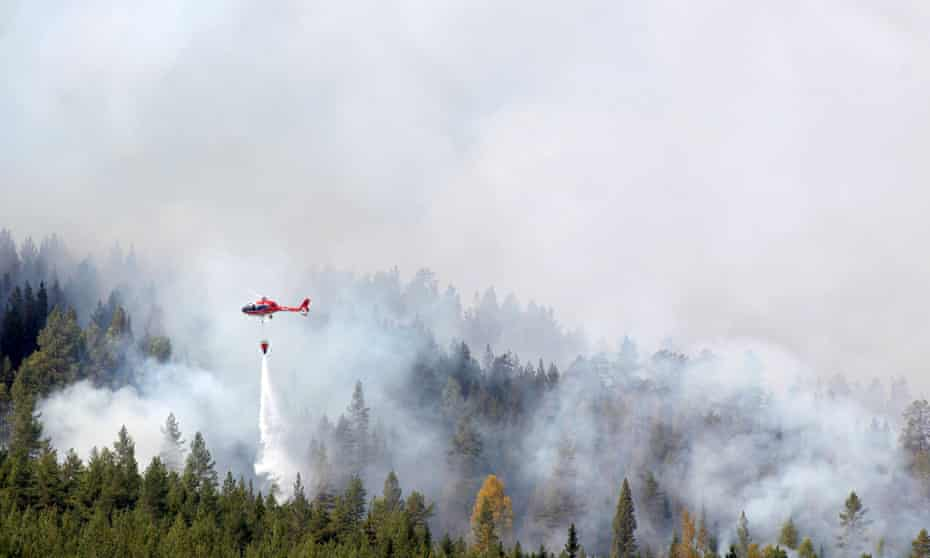 Firefighters battle a blaze in a forest in western Sweden, the worst hit country