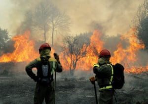 Rianxo, SpainFirefighters try to extinguish a forest fire. A total of 750 hectares have been blazed by the forest fire that started a day earlier affecting the towns of Dodro and Rianxo