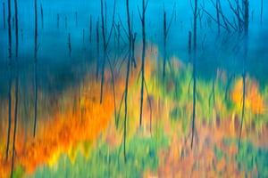 Fred Hazelhoff Portfolio award winner Cuejdel My Lake by Gheorghe Popa (Romania)