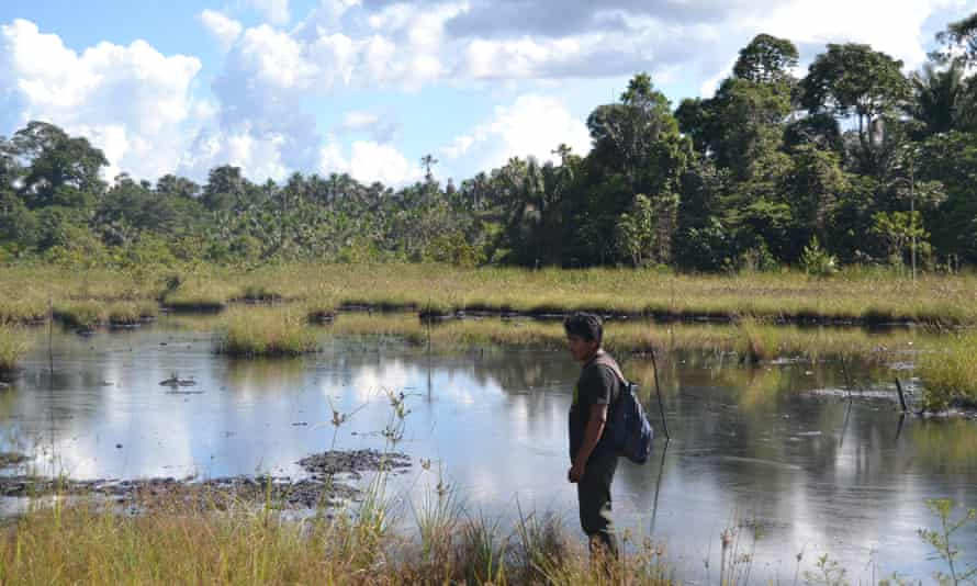 """One of the """"lakes"""" of oil, photographed in 2013, in the Pacaya Samiria National Reserve in Peru's Amazon reported by indigenous organizations."""