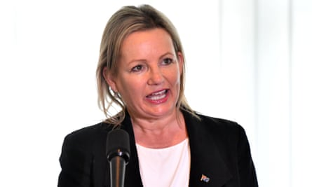 The federal environment minister, Sussan Ley