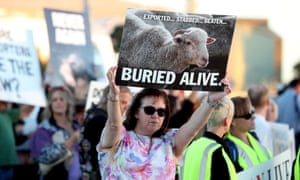 Animal welfare activists call for an end to the live export trade at a rally at Port Adelaide on 27 April 2018.