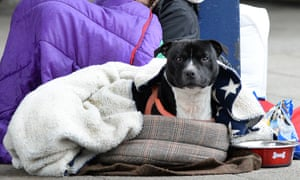Oregon city's dog ban condemned as crackdown on homeless