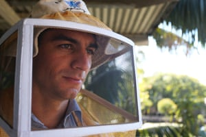 Thomas Gillard, PhD Candidate and bee keeping trainer suits up to examine hives at the BEE Lab.