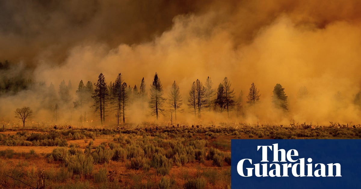 American west stuck in cycle of 'heat, drought and fire', experts warn