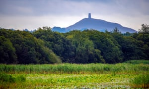 Reeded pools and lakes at Avalon Marshes, with Glastonbury Tor in distance.