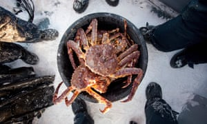 People stand around a bucket of King Crab, caught in a lake at Jarfjord, near Kirkeness, northern Norway