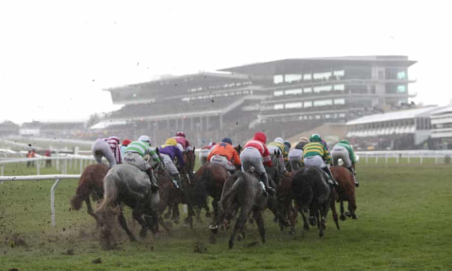 Action during the County Hurdle at the last Cheltenham Festival. A BHA report on equine fatalities at the Festival is due this month.