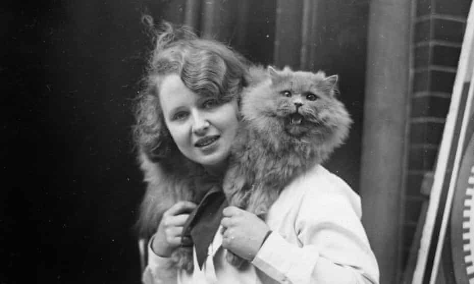 Patrick of Allington, a blue persian cat, wins first prize at a 'society championship show' at Holy Trinity Hall in central London, 1933