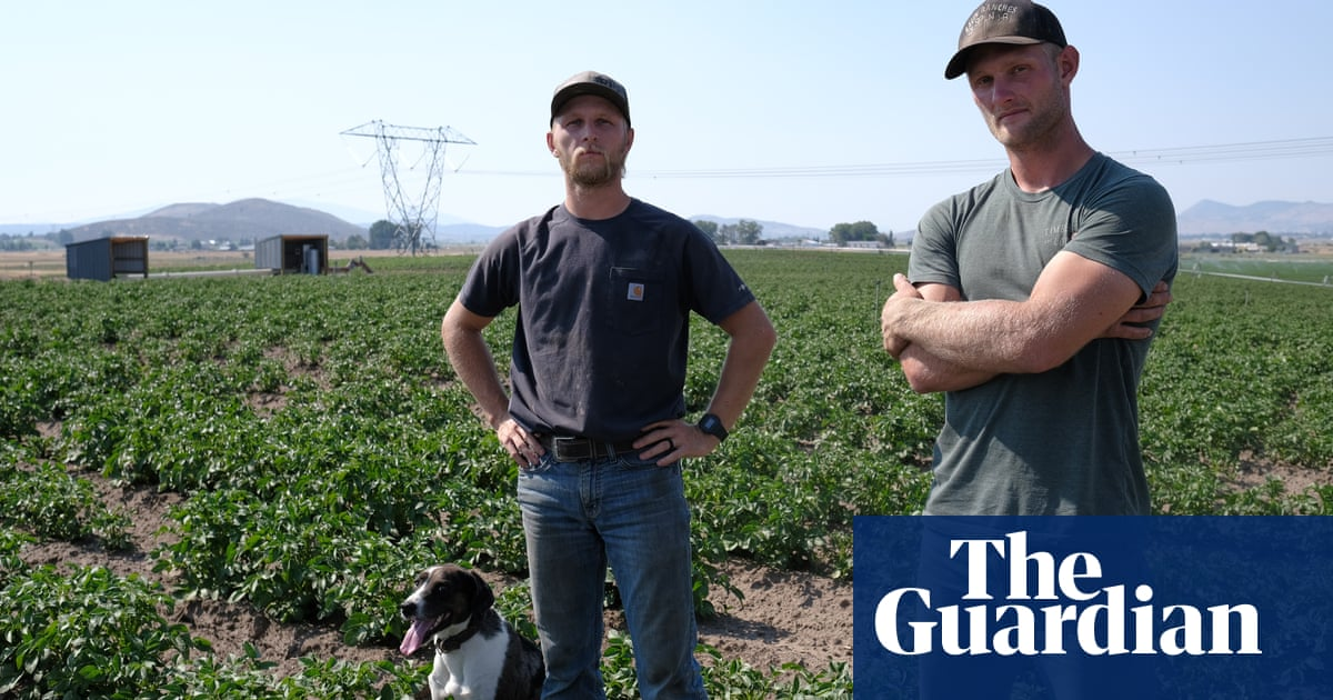 Young farmers lose hope as drought closes in: 'It's like a sad country song'
