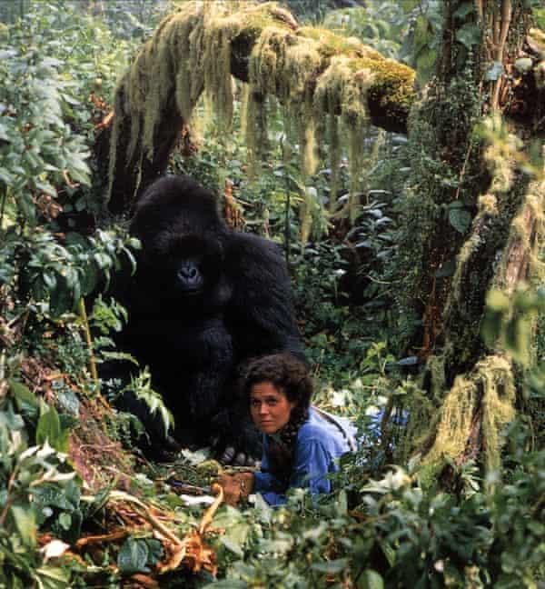 As Dian Fossey in Gorillas in the Mist.