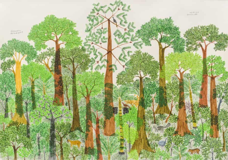 Evoking the Amazon … Terraza Alta II by Abel Rodríguez.
