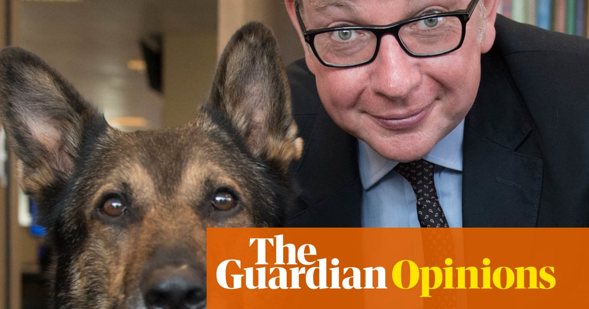 Michael Gove's puppy-farm ban shows he gets the politics of pets | Anne Perkins