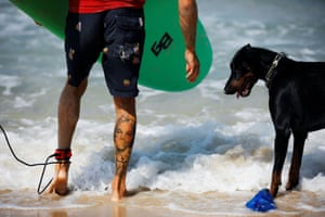 A surfer stands next to a dog along the shore of the Mediterranean Sea as Israel enters its fourth day under a second nationwide lockdown