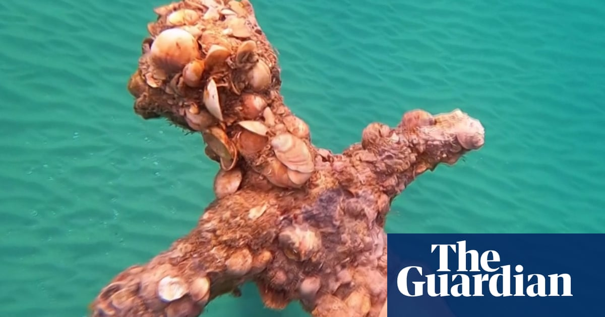 Diver uncovers ancient crusader sword from Israeli seabed – video