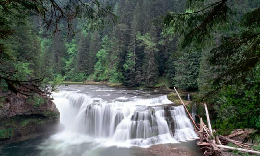 Federal land, such as the Lewis River Gifford Pinchot national forest in Washington state, could be opened up for logging, mining and other commercial activities if House Republicans have their way.