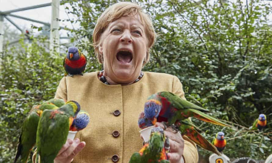Angela Merkel feeds Australian lorikeets at Marlow Bird Park in Marlow, Germany last week.