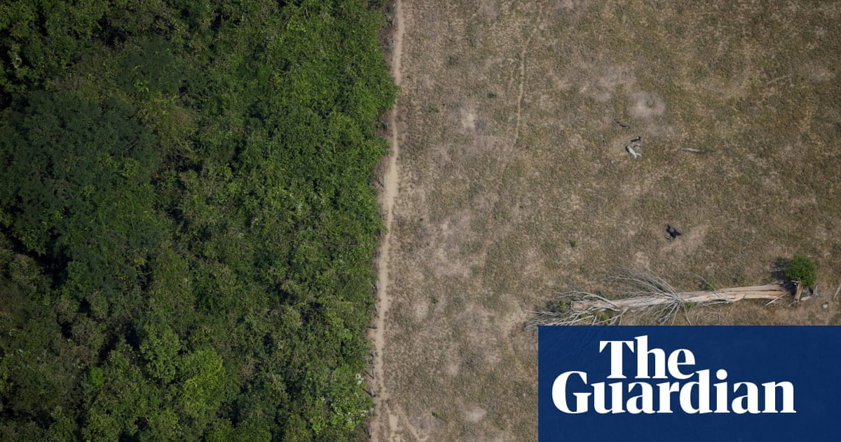 Brazilian Amazon released more carbon than it absorbed over past 10 años