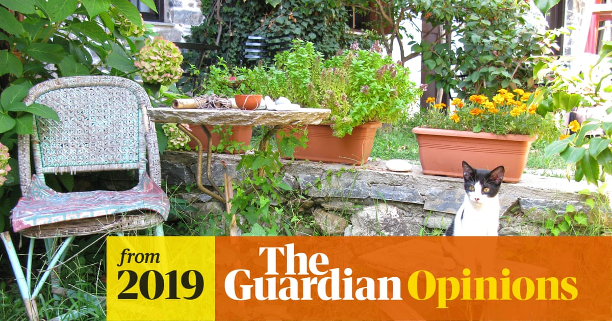In Praise Of Unrenovated Kitchens And Overgrown Gardens Johanna