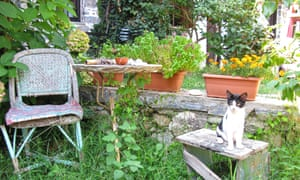 GREECE. The Pelion Peninsula. A rustic garden scene in the village of Damouchari. Image shot 2008. Exact date unknown.