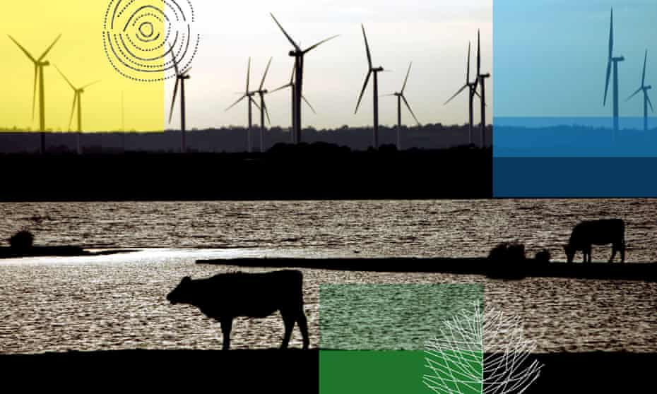 From conference of the parties to climate finance to methane and mitigation, here are the terms to get to grips with