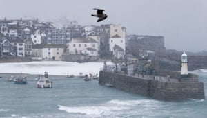 A seagull flies above the harbour a snow arrives in St Ives, Cornwall