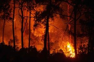 A forest burning in Mugla province, Turkey